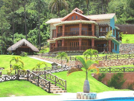 villa palmera copy